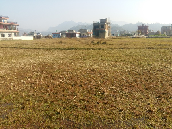 Land For Sale at Begnastal, Pokhara