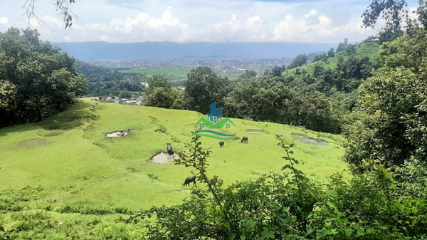 Land for Sale at Aarba, Pokhara