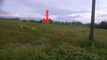 Beautiful Land On Sale In Gitanagar, Bharatpur