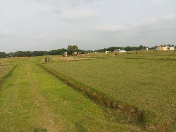Land For Sale at Katahari, Morang