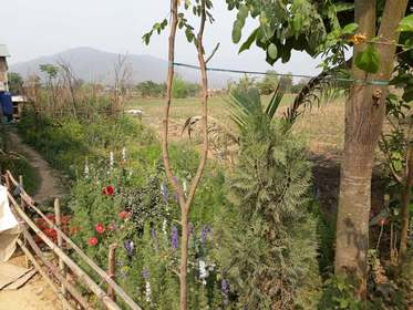 Land For Sale at Chainpur & Bhandara, Chitwan