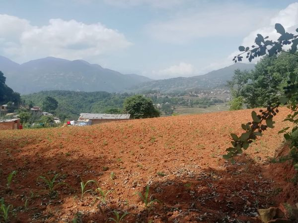 Land for Sale at Sokhel, Dakshinkali