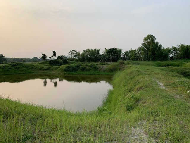 land_for_sale_at_Jhapa_(37).jpg