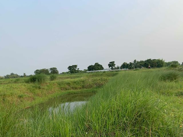 land_for_sale_at_Jhapa_(36).jpg
