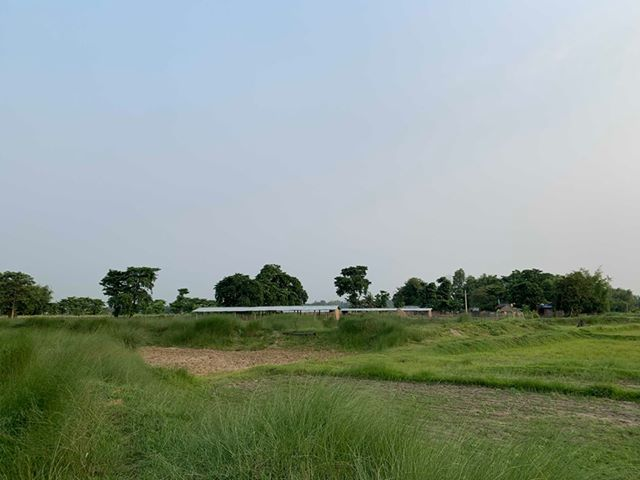 land_for_sale_at_Jhapa_(40).jpg