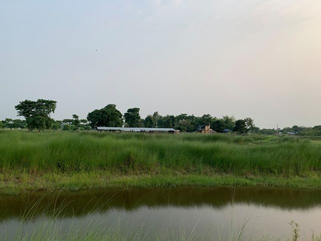 land_for_sale_at_Jhapa_(32).jpg