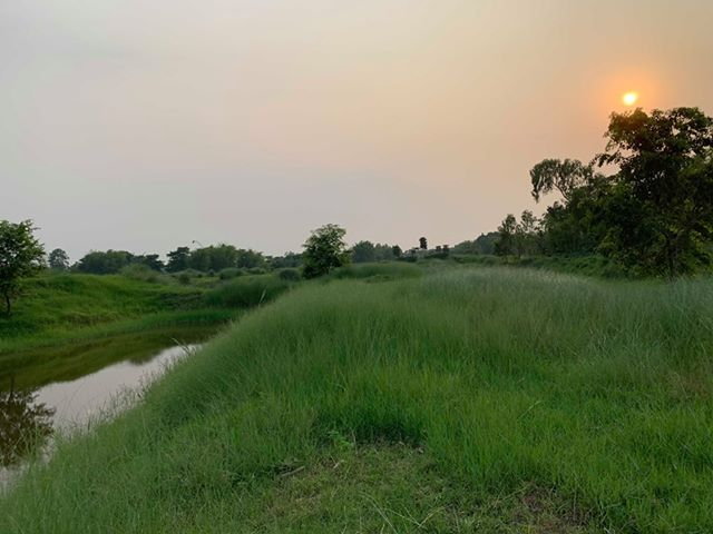 land_for_sale_at_Jhapa_(33).jpg