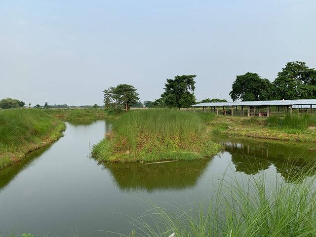 land_for_sale_at_Jhapa_(24).jpg