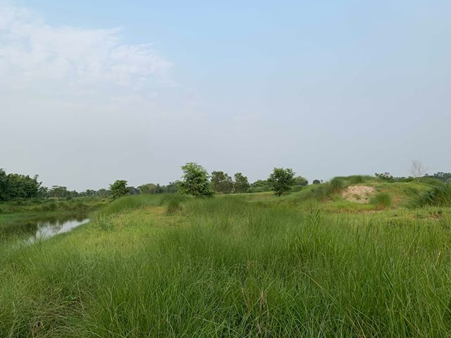 land_for_sale_at_Jhapa_(11).jpg