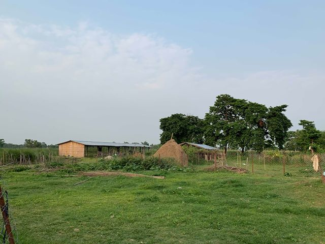 land_for_sale_at_Jhapa_(10).jpg