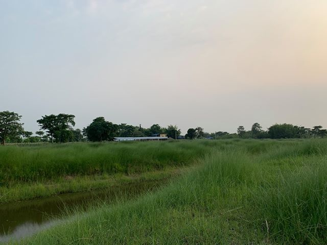 land_for_sale_at_Jhapa_(9).jpg