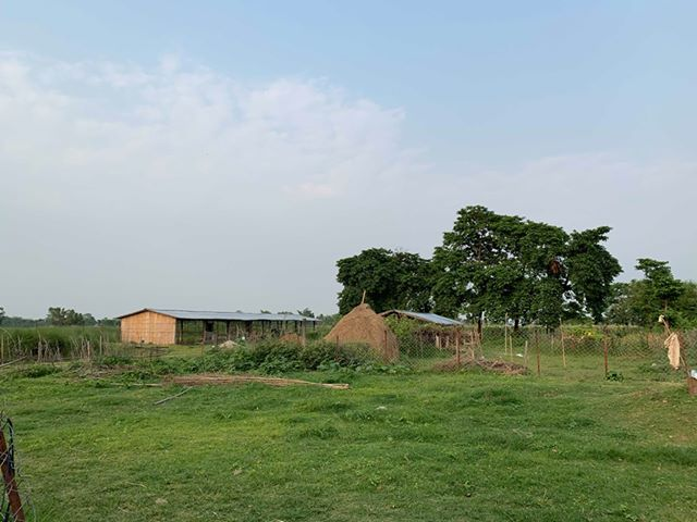 land_for_sale_at_Jhapa_(30).jpg