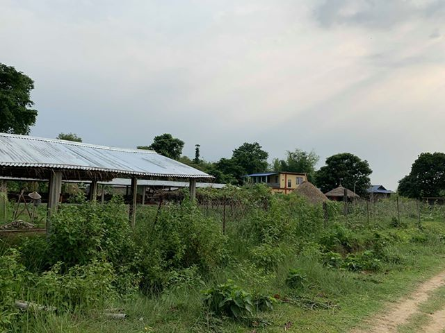 land_for_sale_at_Jhapa_(25).jpg