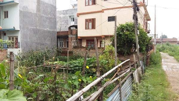 Land for Sale nearby Bhatbhateni, Radhe Radhe, Bhaktapur