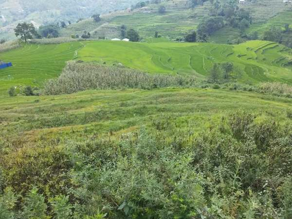 Land For Sale At Nagarkot, Bhaktapur