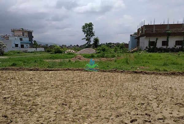 Land for Sale at Sarauli, Rupandehi