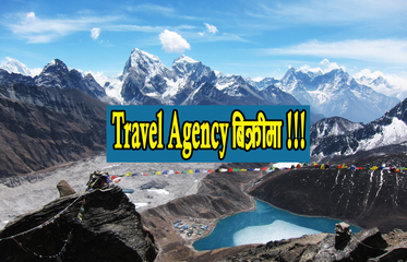 Thumb travel agency
